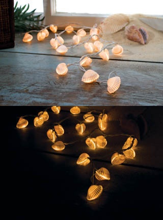 Shell Fairy Lights
