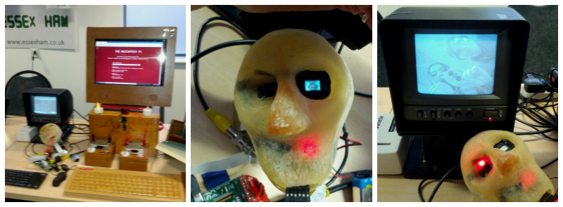 Pinnochion Face at Southend Raspberry Jam