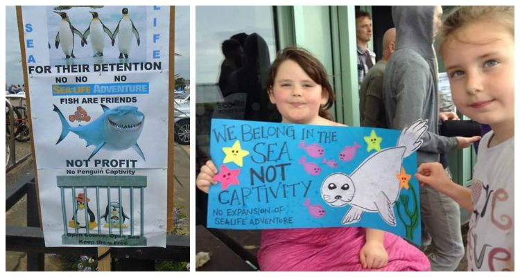 Sea Life Adventure Protest
