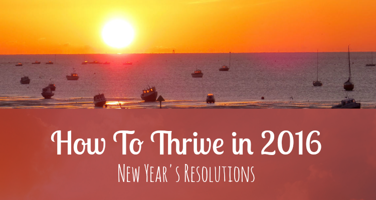 How To Thrive in 2016